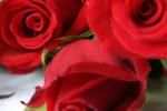 Walentynkowe przysmaki
